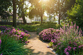 Park in Feldberg Seenlandschaft - Mecklenburg, Germany