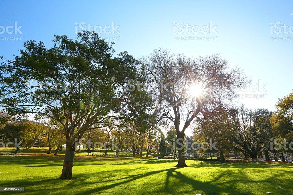 Park in Melbourne stock photo