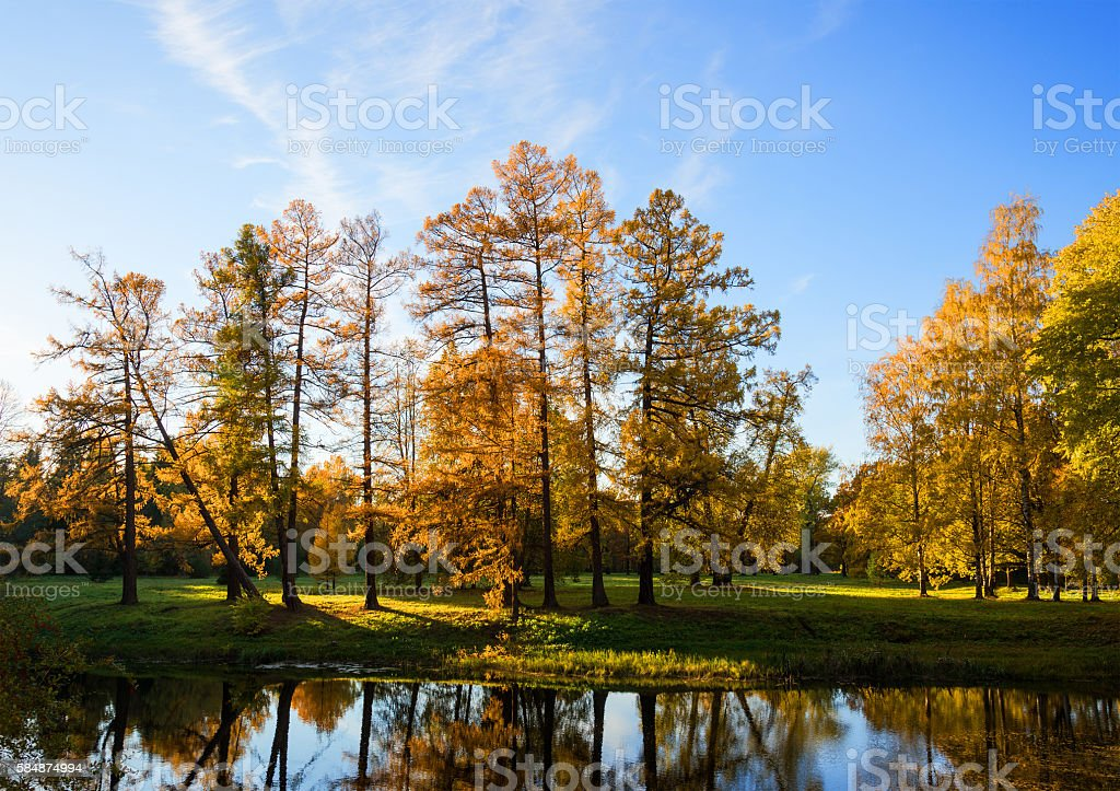 Park in red and orange colors stock photo