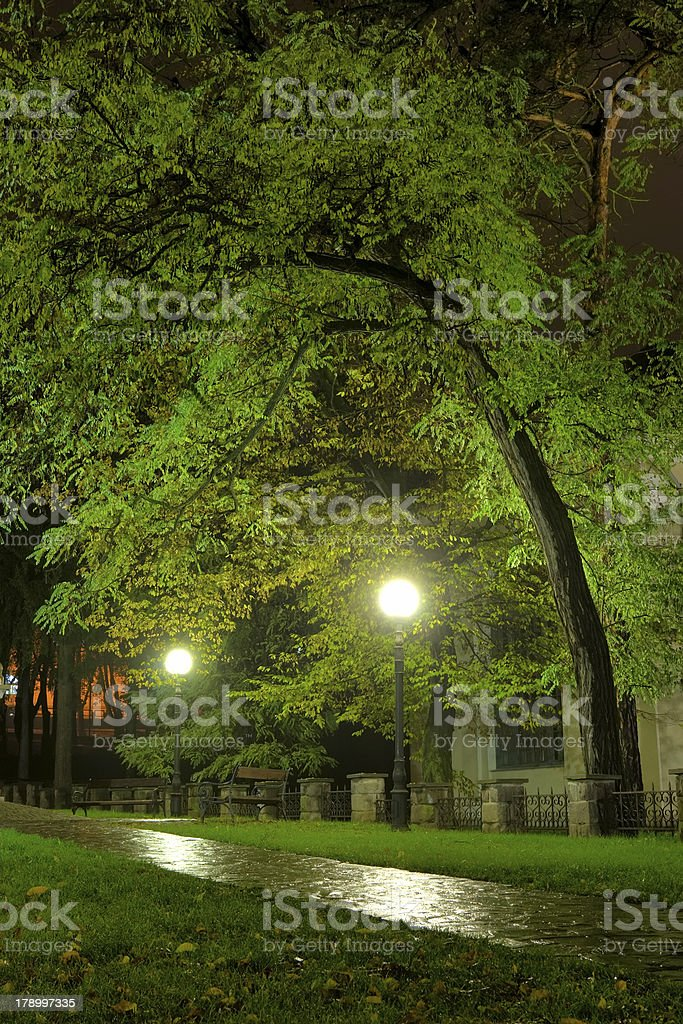 Park in the night royalty-free stock photo
