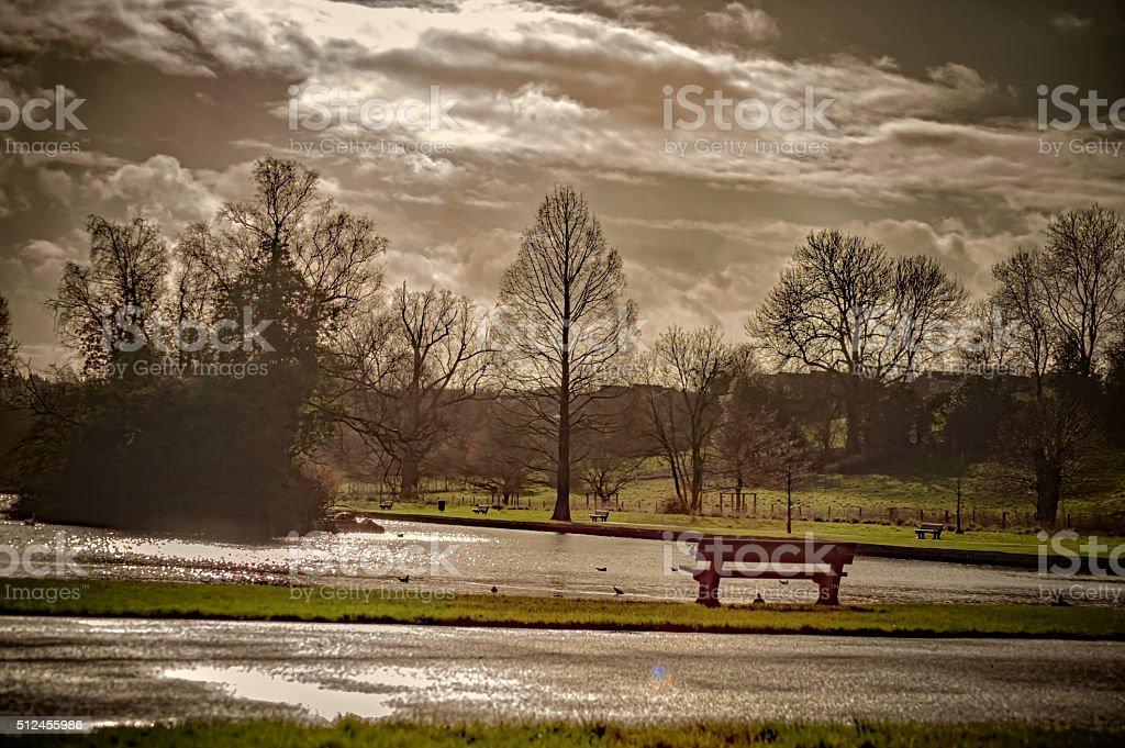 Park - landscape stock photo