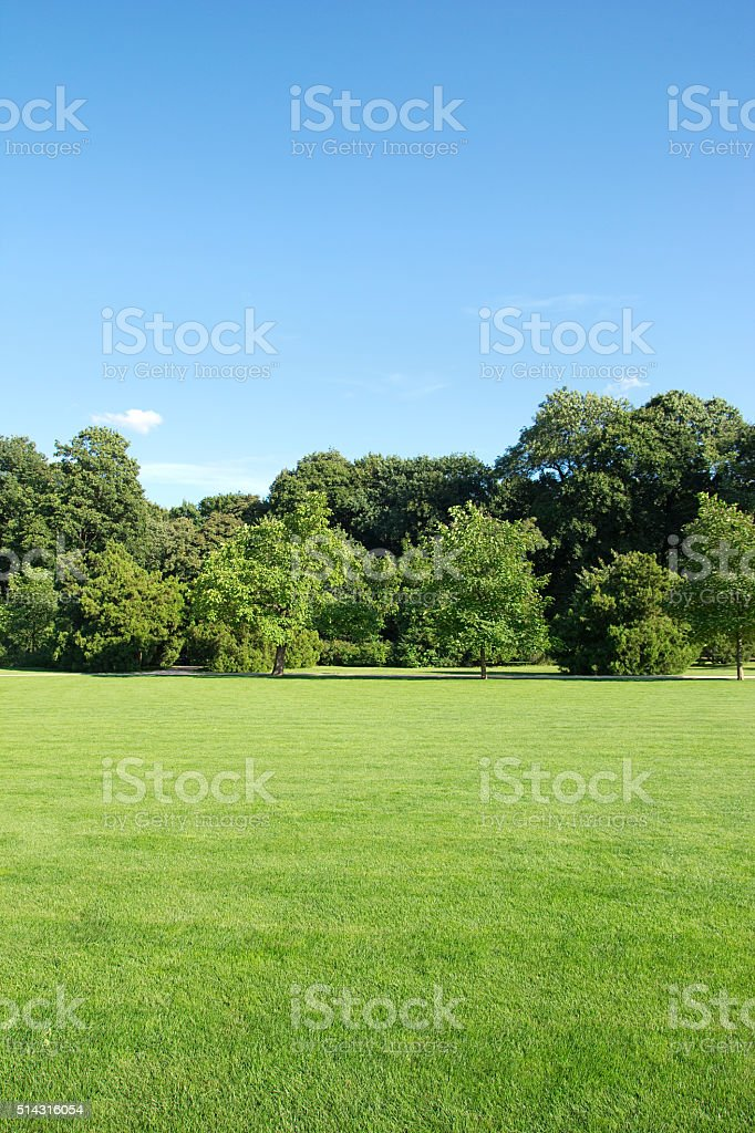 park landscape stock photo