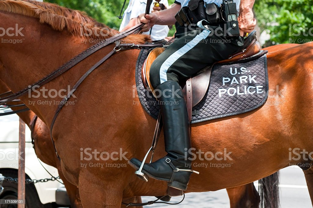 U.S. Park Police on horseback stock photo