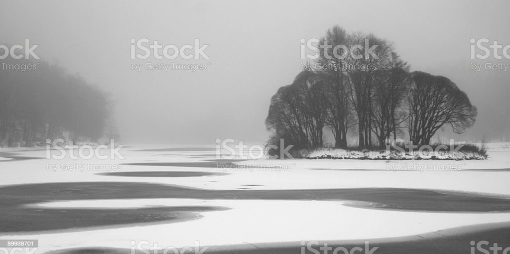 Park. Pond. Fog. royalty-free stock photo