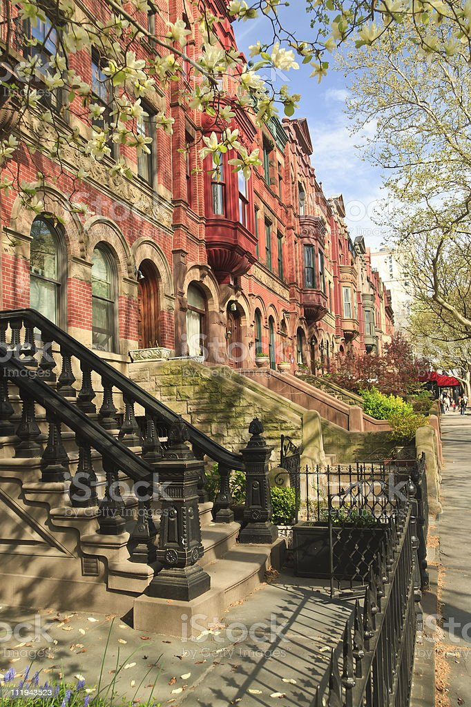 Park Slope Apartment Stoops stock photo