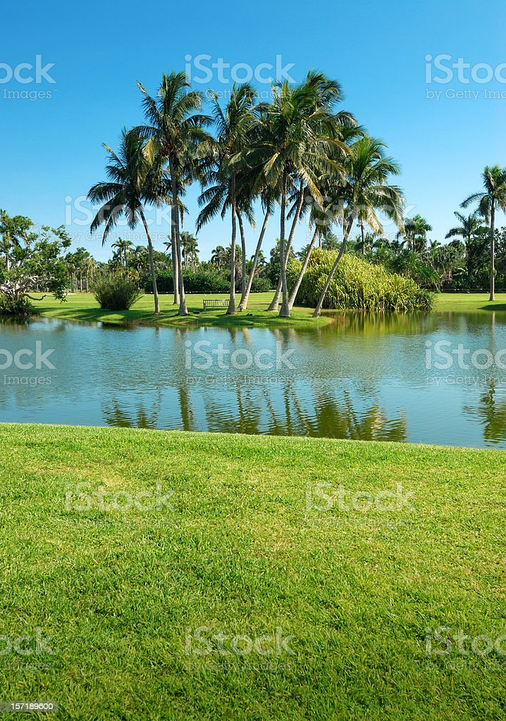 park small lake royalty-free stock photo