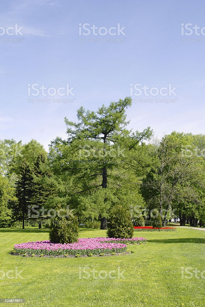 Park with bed royalty-free stock photo