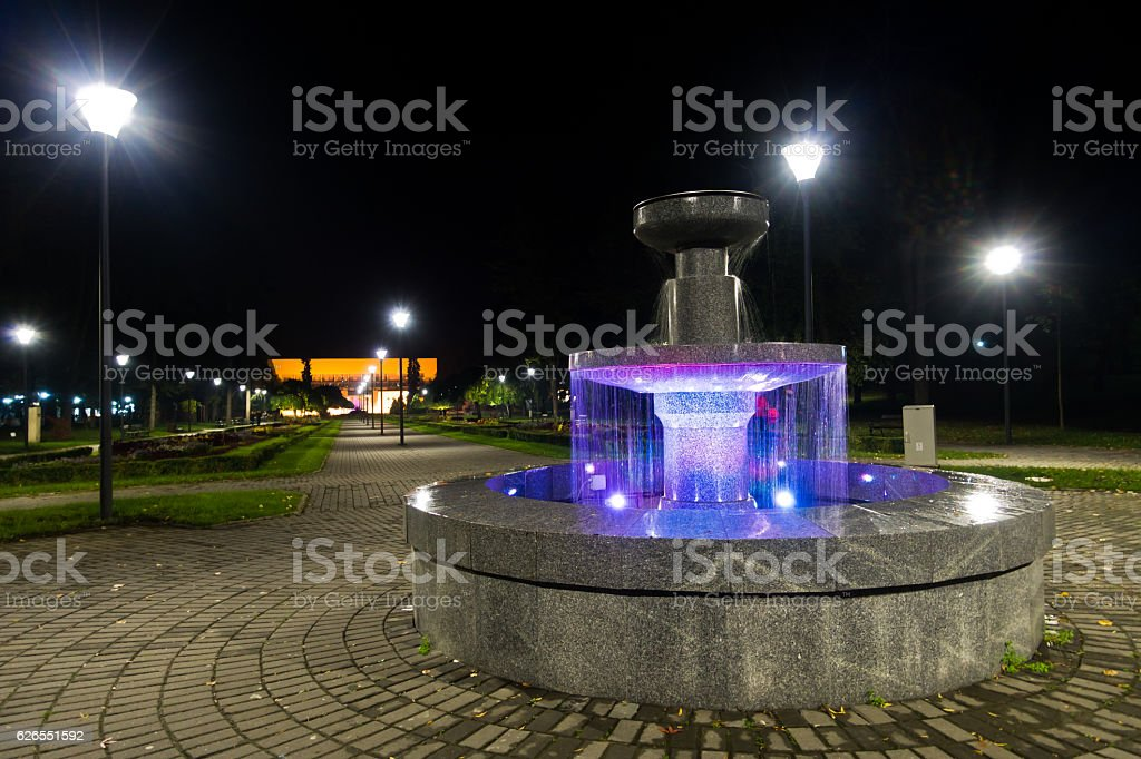 Park with fountain in Vrnjacka banja at night stock photo