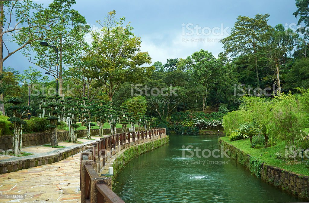 Park with river and decorative trees stock photo