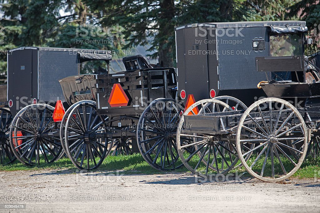 Parked Amish Buggies stock photo