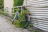Parked and overgrown bicycle on the roadside