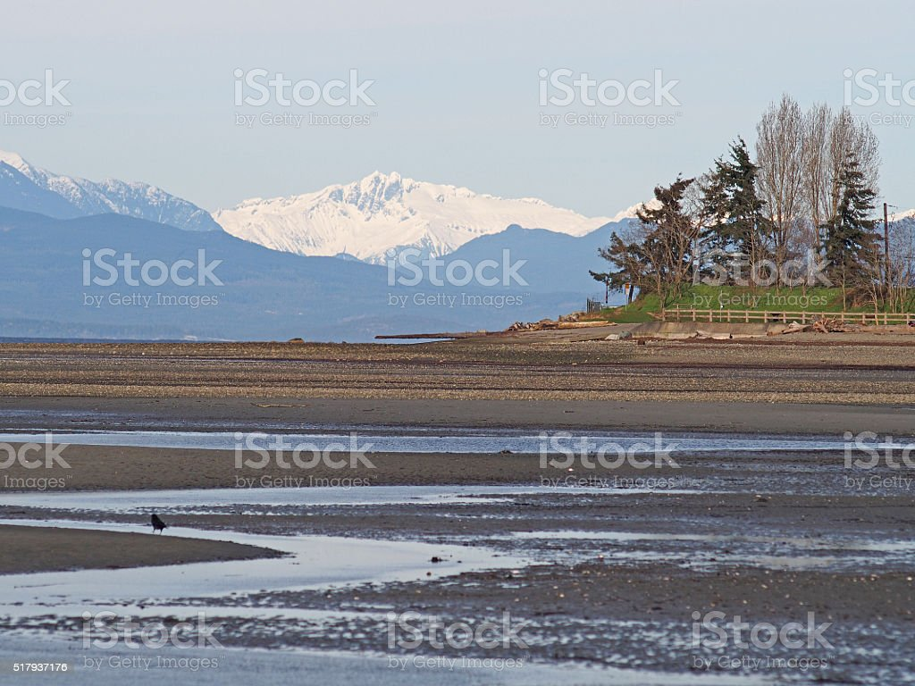 Parksville Vancouver Island Beach at Low Tide stock photo