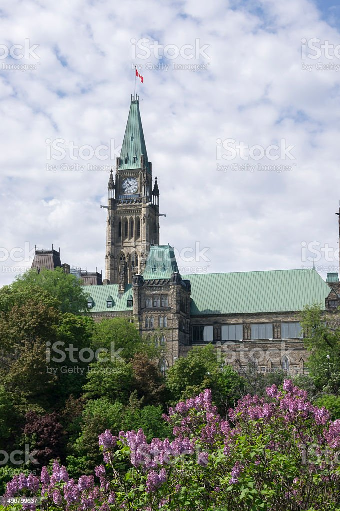 parliament and lilacs royalty-free stock photo