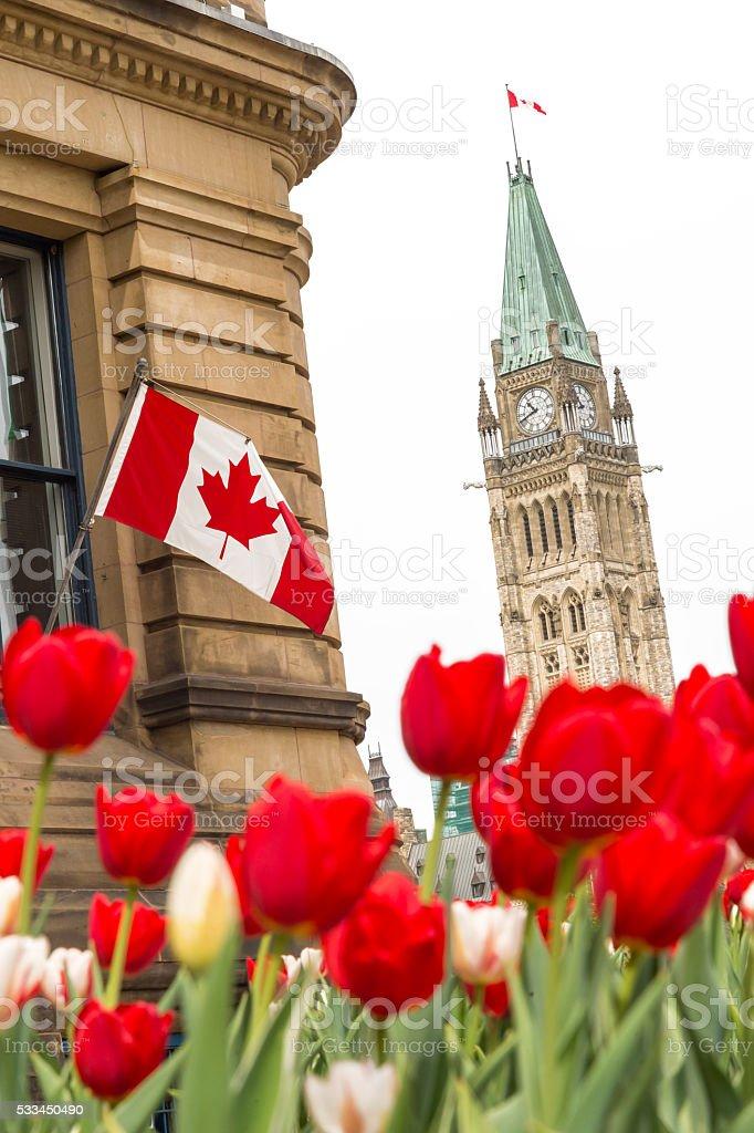 Parliament building at Ottawa during Ottawa Tulip Festival stock photo