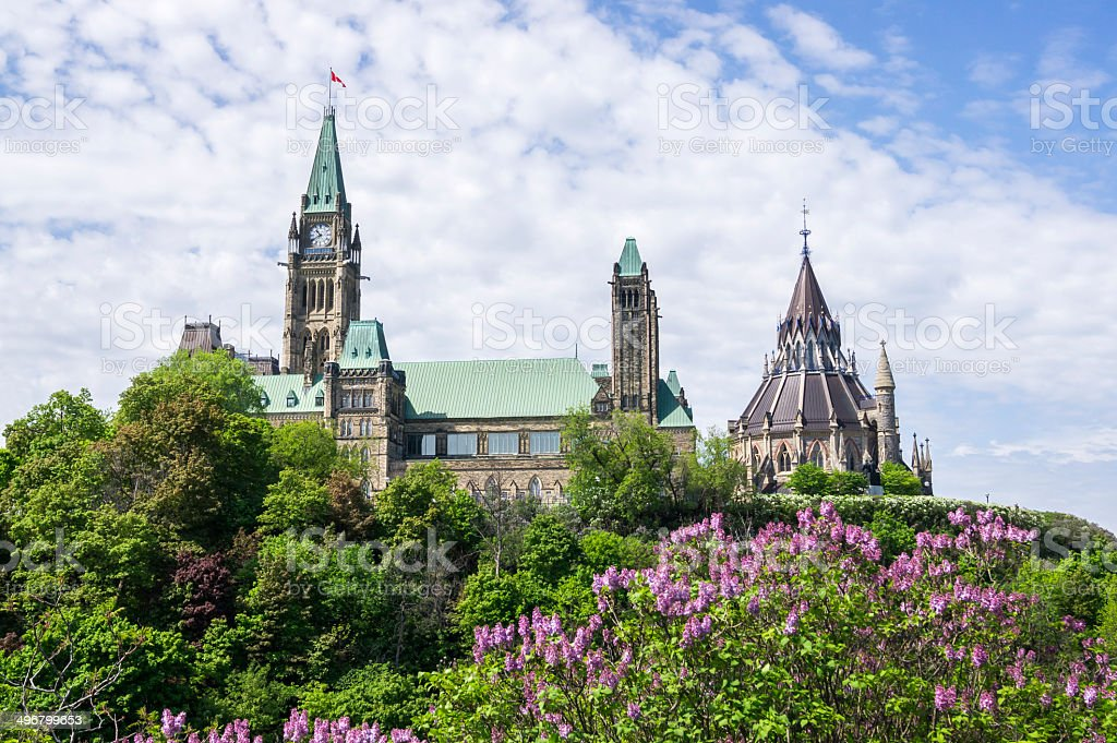 parliament from the east with lilacs royalty-free stock photo