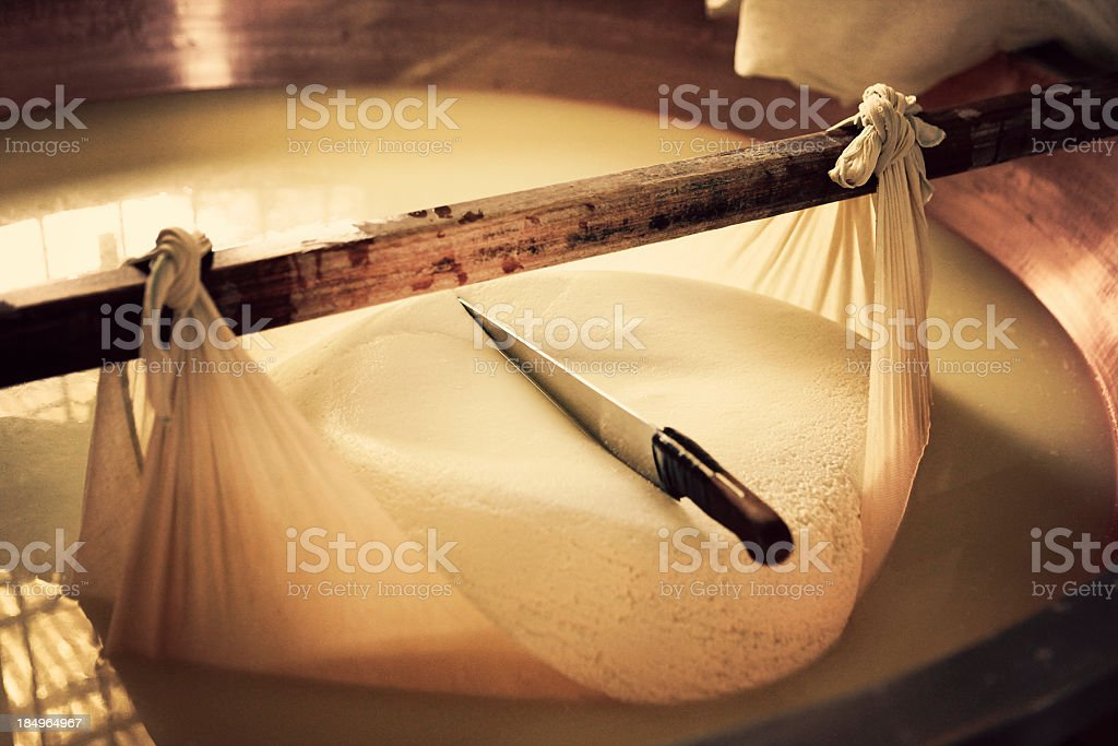 parmesan cheese in the making stock photo