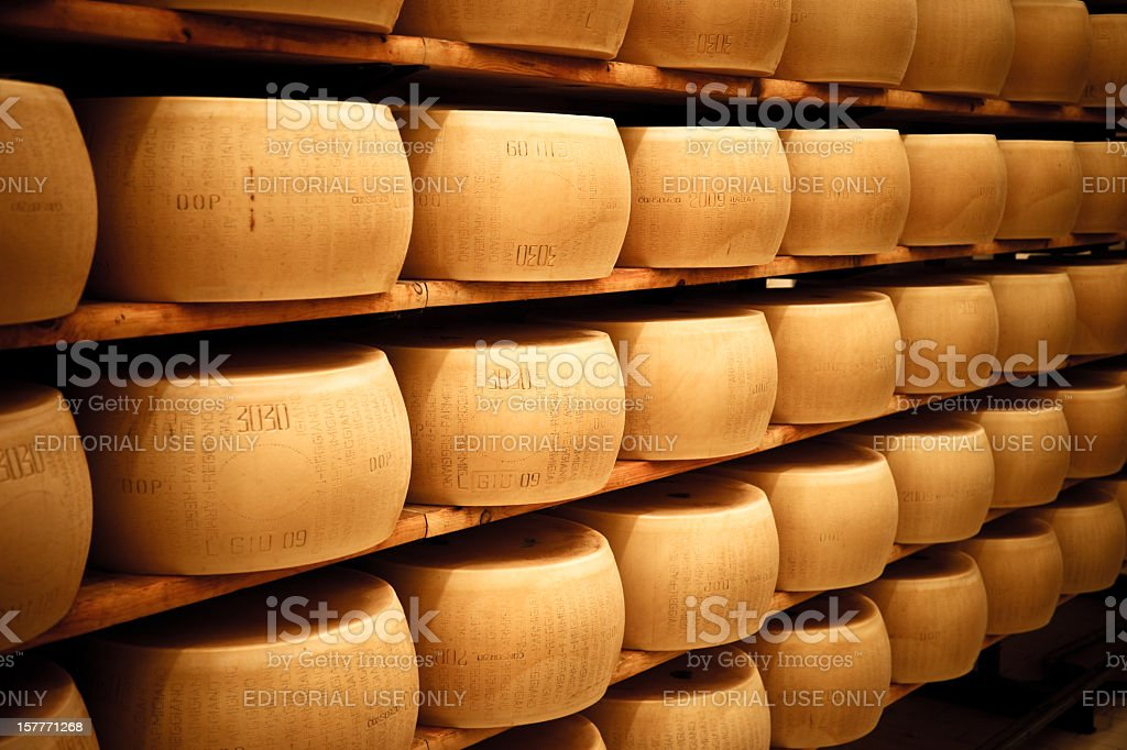 Parmesan cheese wheels laiding out in the silent maturation room stock photo