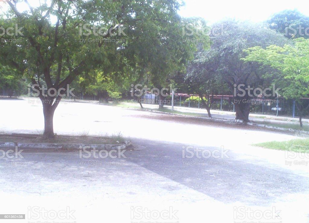 parque stock photo
