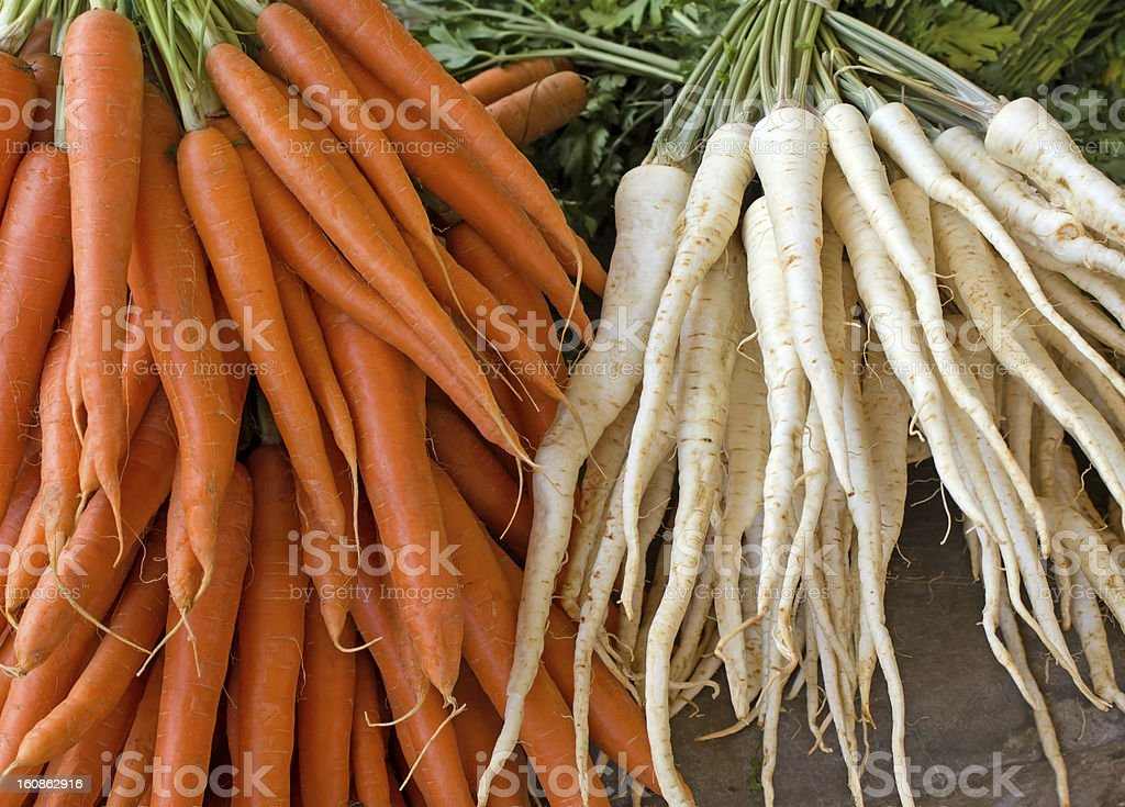 Parsley and carrot (roots) royalty-free stock photo