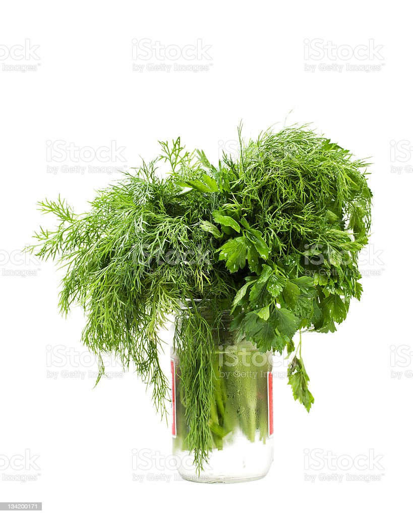 parsley and dill royalty-free stock photo