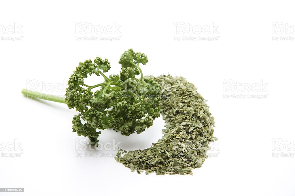 Parsley freshly and drily stock photo