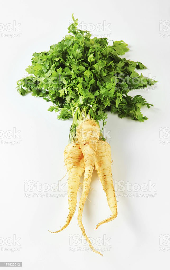 Parsley isolated on white royalty-free stock photo