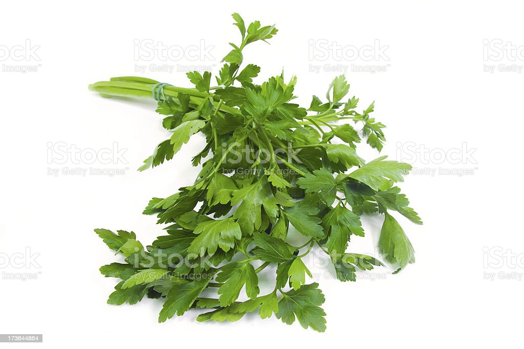 Parsley leaves royalty-free stock photo