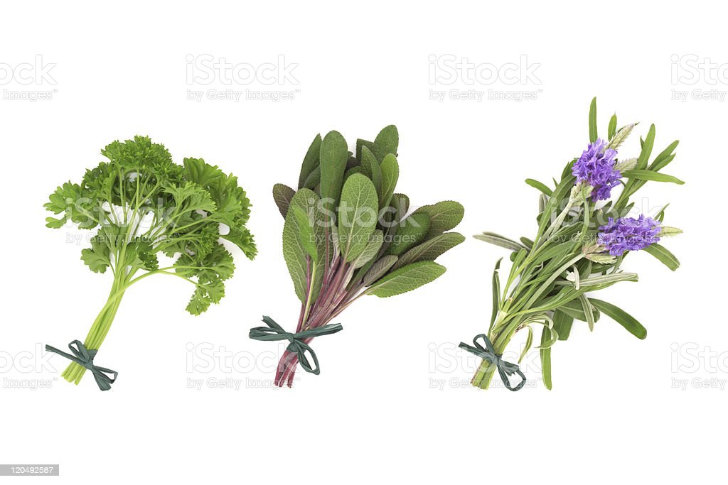 Parsley, Sage and Lavender Herbs stock photo