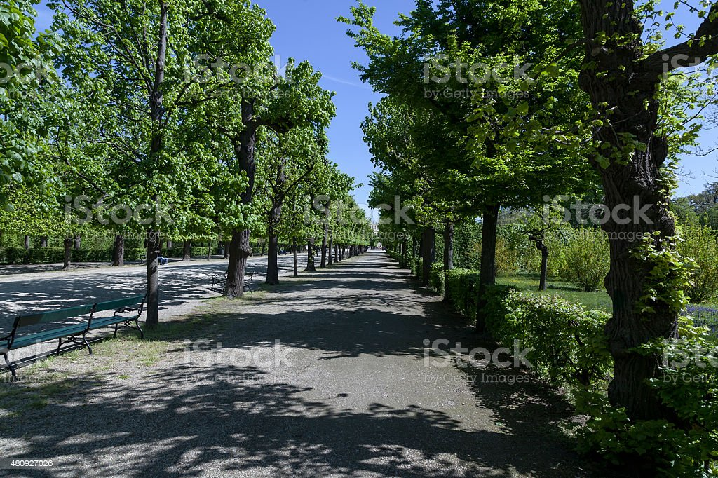 Part of the park in Sch?nbrunn royalty-free stock photo