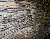 Part of the wall made of branches and mud