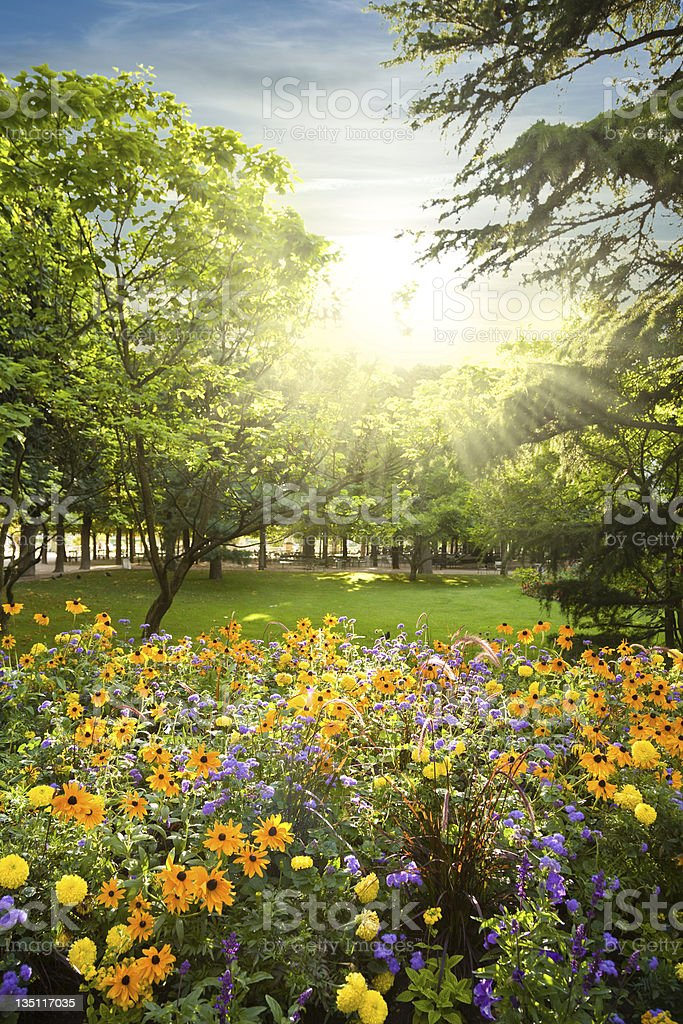 Parterre plenty of flowers rounded by trees stock photo