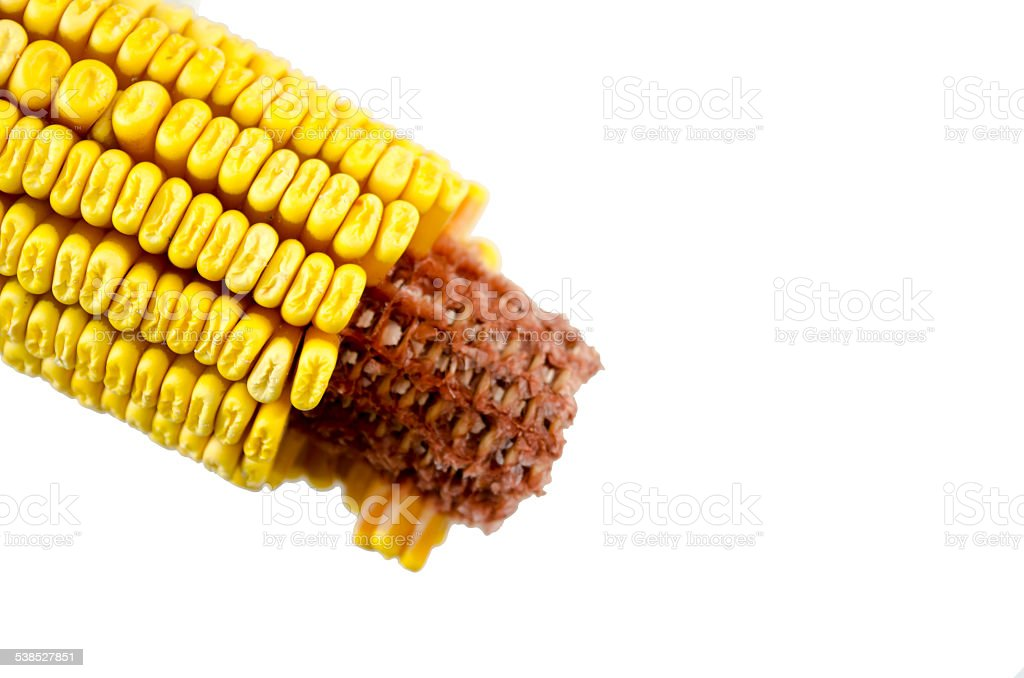 Partially crumbled corn isolated royalty-free stock photo