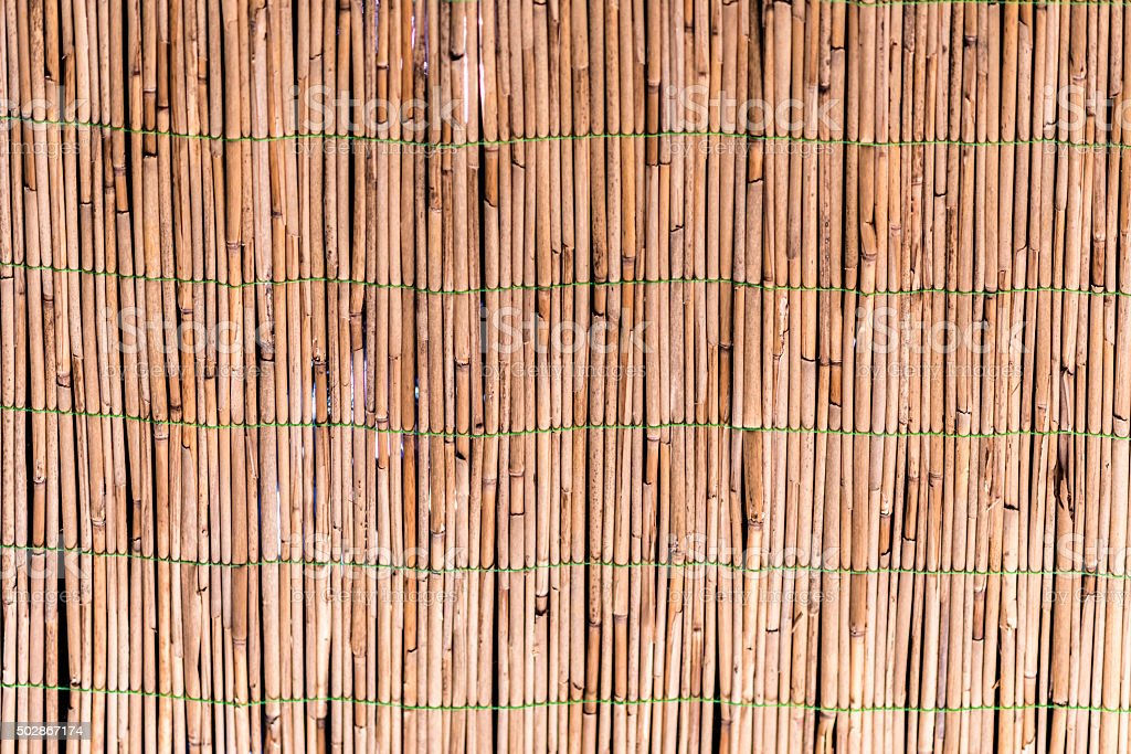 Partition of dried bamboo sticks stock photo