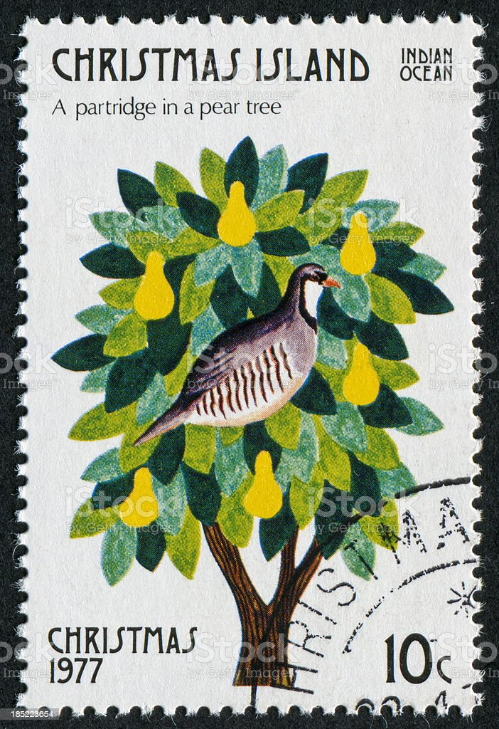 Partridge In A Pear Tree Stamp stock photo
