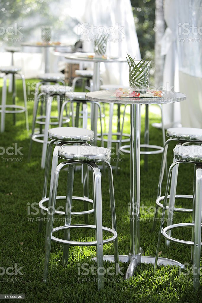 Party Details royalty-free stock photo