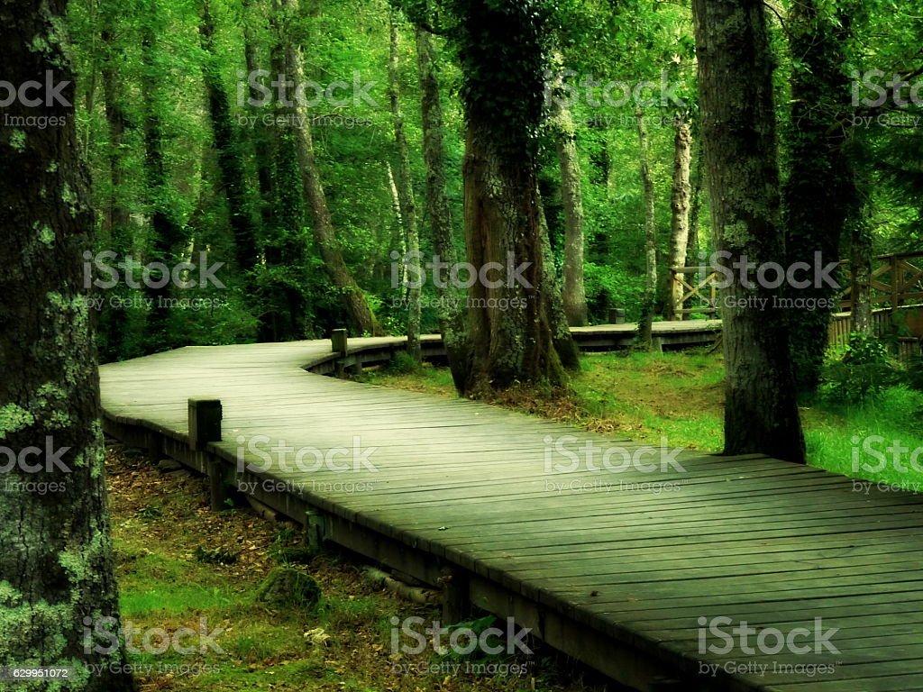 Pasarela del paseo fluvial de Vilalba, Lugo, Galicia stock photo