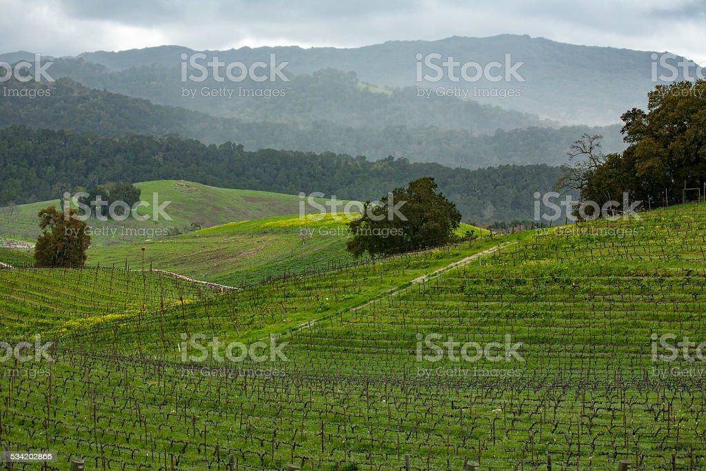 Paso Hillside landscape stock photo
