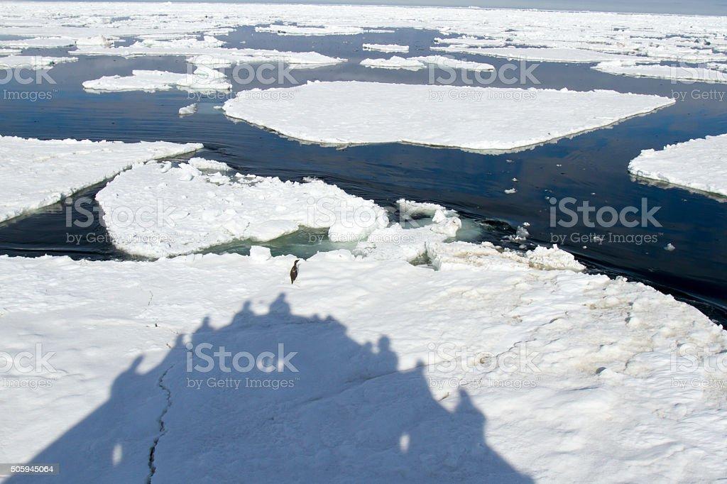 Passenger ship shadow of ice floe, Antarctica stock photo
