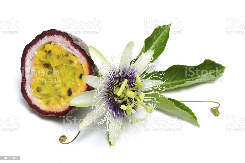 Passionfruit with flower stock photo