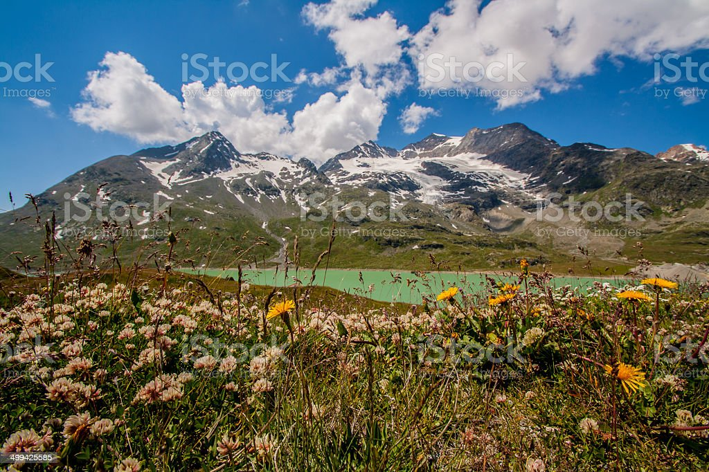 Passo del Bernina stock photo