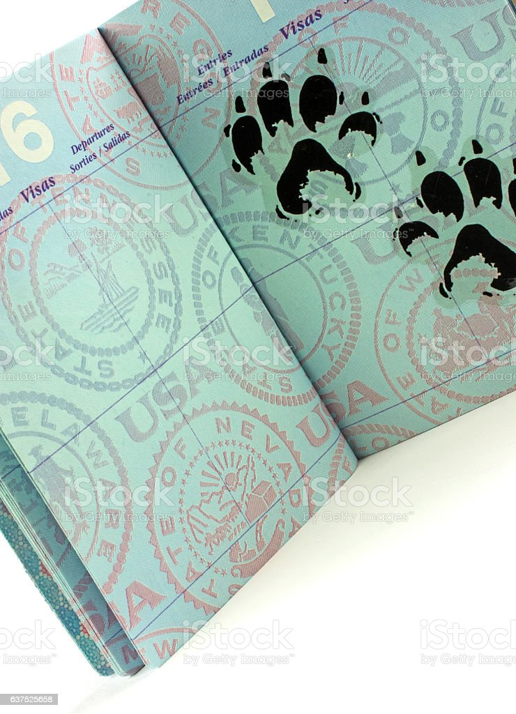 USA passort- satirical visa stamp of large cat paw prints stock photo