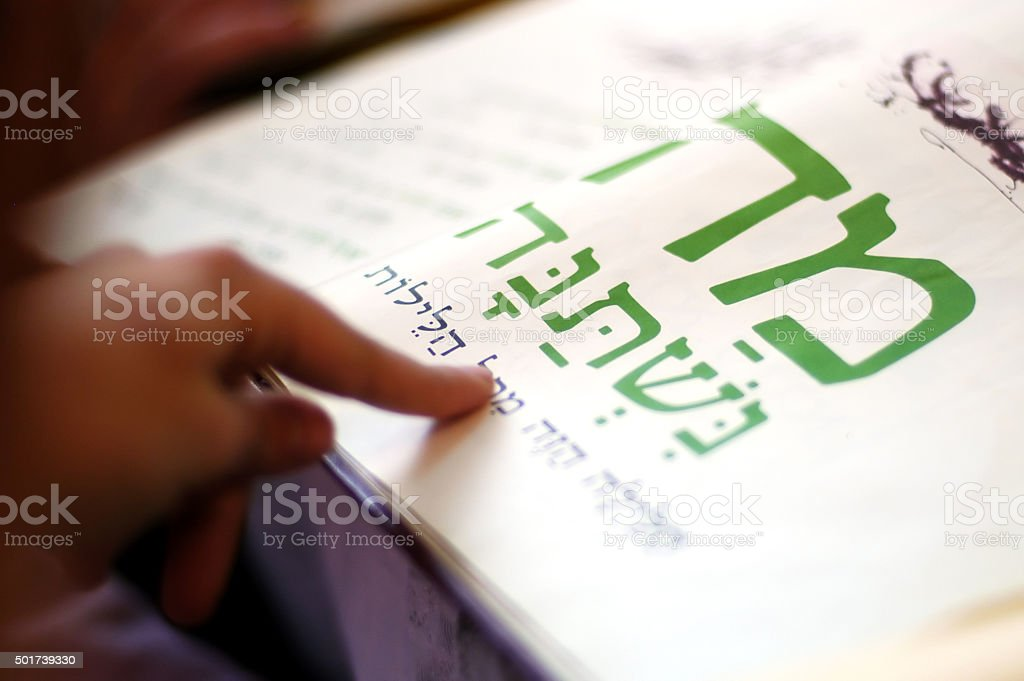 Passover Dinner Celebrations stock photo