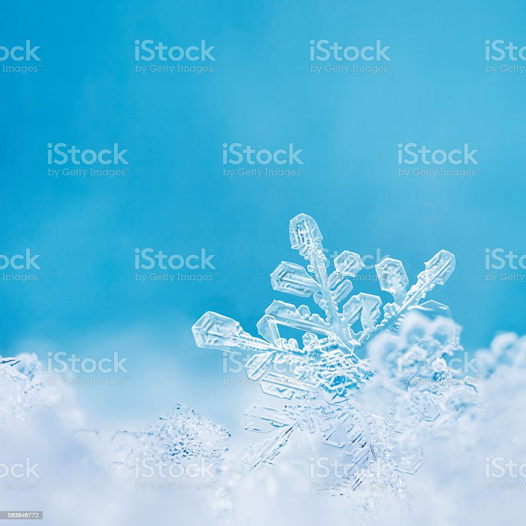 Pastel Blue Snowflake stock photo