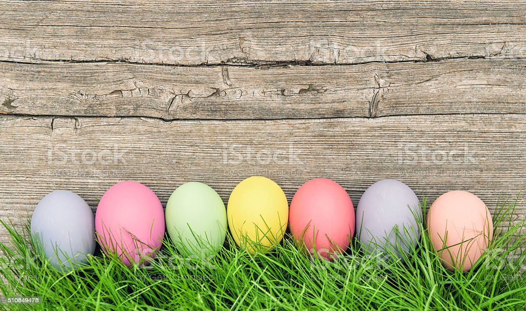 Pastel colored easter eggs decoration in green grass stock photo