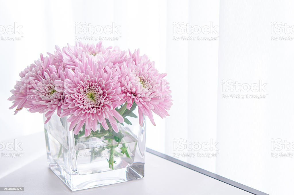 pastel purple asters in glass vase stock photo