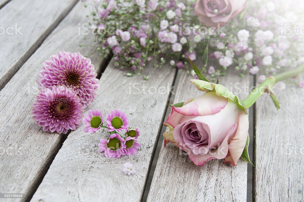 Pastel rose on a wooden table stock photo