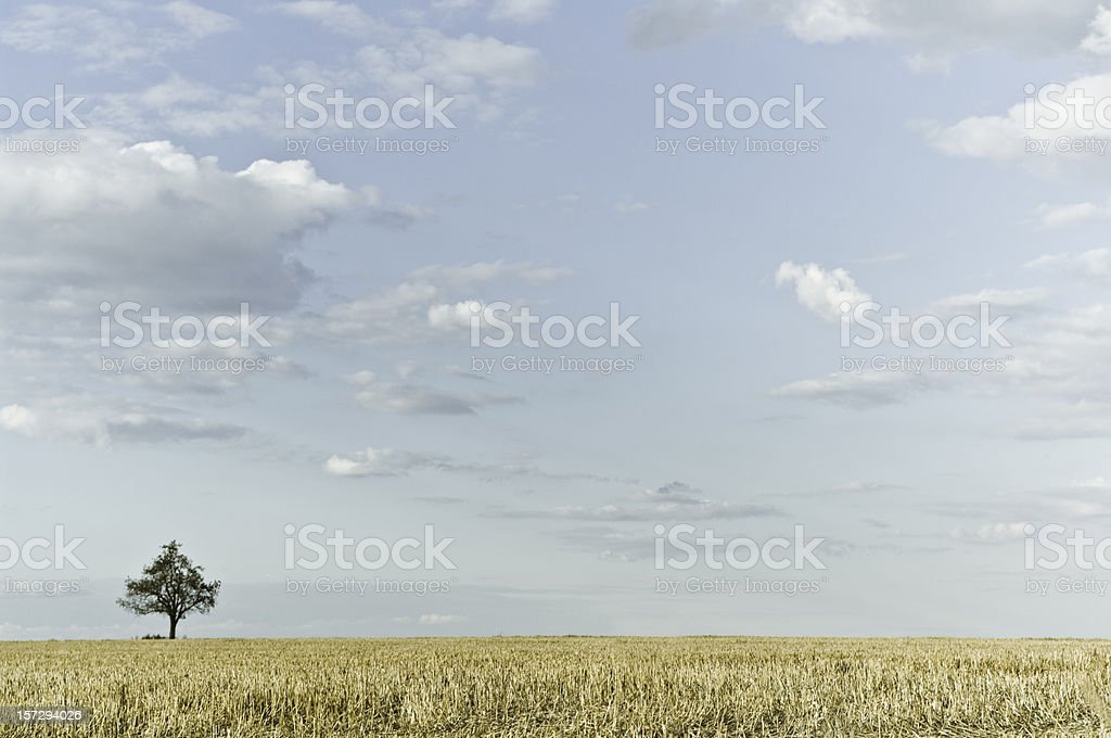 Pastel Summer Landscape royalty-free stock photo