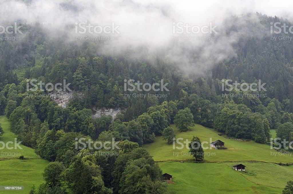Pasture in Switzerland royalty-free stock photo