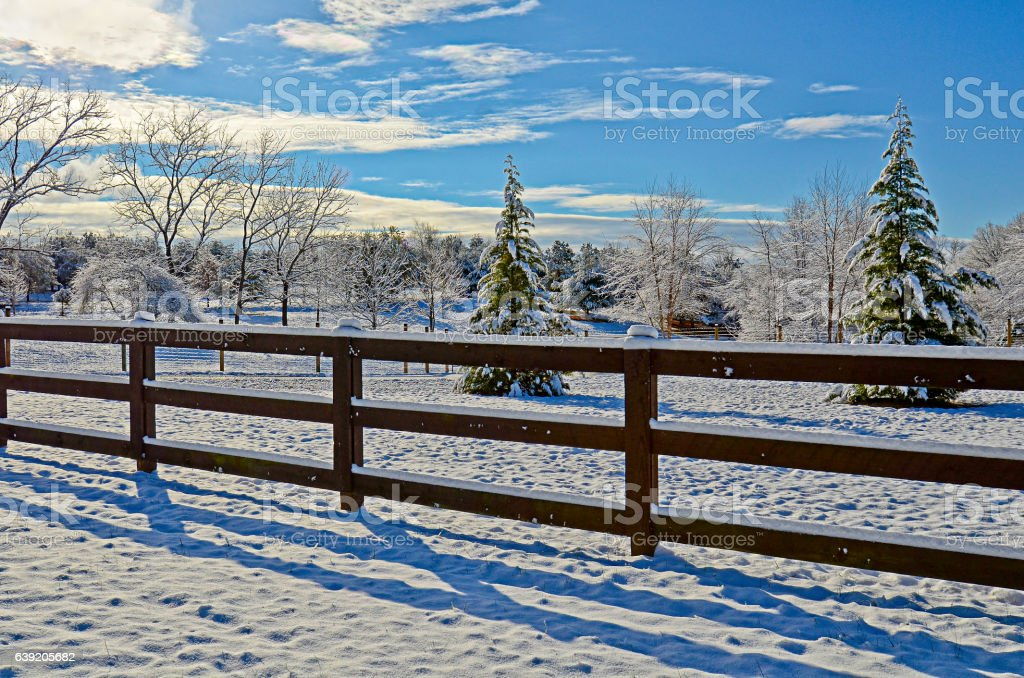 Pasture Land in the Snow stock photo
