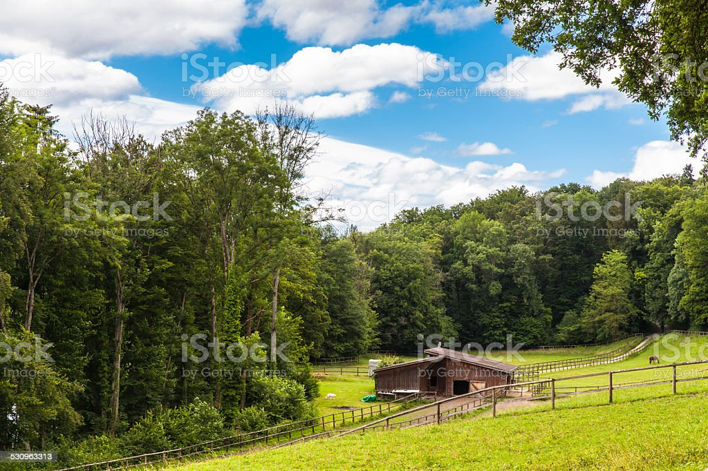 Pasture near Schaffhausen by the hiking trail stock photo